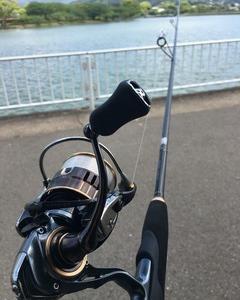 ゴールデンウィーク最終日も、やはりバス釣りから始まる〜駕与丁公園(福岡県糟屋郡)