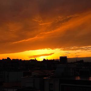 【736】西の空