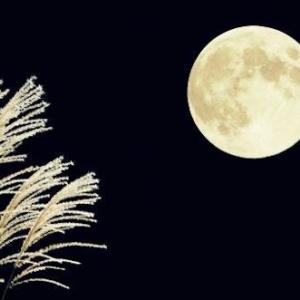 中秋の名月!〜相模原・町田の水まわり・外壁屋根リフォーム専門店 リプラス