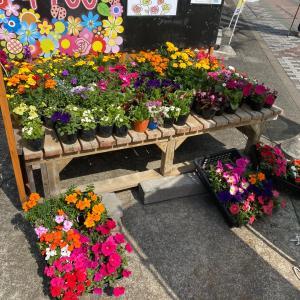 花は良いね〜!〜相模原・町田の水まわり・外壁屋根リフォーム専門店 リプラス