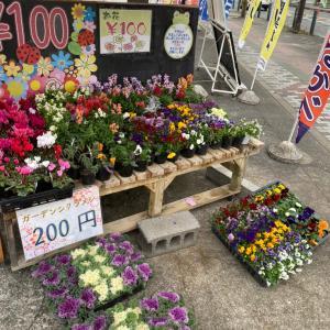 お花はコロナでも大人気〜相模原・町田の外壁屋根・水廻りリフォーム