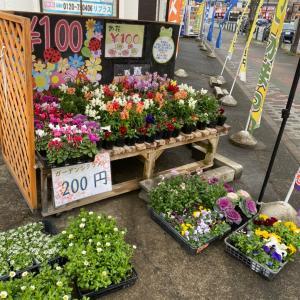 年末もお花は大人気〜相模原・町田の外壁屋根・水廻りリフォーム