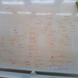 語学学習は、自分の連想ツリーを訳していく