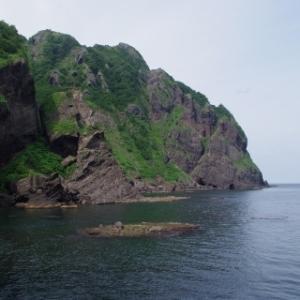 雷電海岸 青物調査