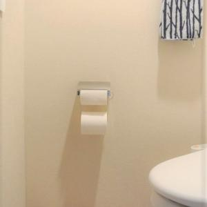 セリア*トイレの救世主!便利なトイレットペーパーストッカー♪