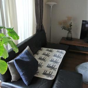 わが家のソファー問題とポチレポ♩半額&お得に買えたもの!
