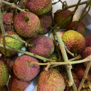 フルーツの美味しい季節になりました。