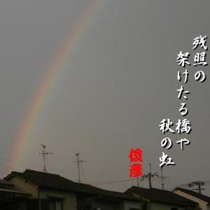 秋の虹、重陽、秋の蝶