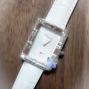 パピヨン時計♪