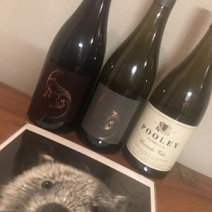 タスマニアのSmall Island Winesの新プロジェクト
