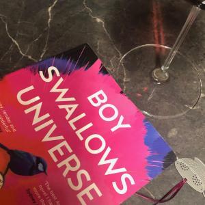 読書にっき Boy Swallows Universe   Trent Dalton