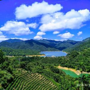 千島湖・八卦茶園・石碇老街(kkdayツアー)