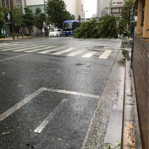 本日は午後から休診とさせていただきます 台風の影響 突風