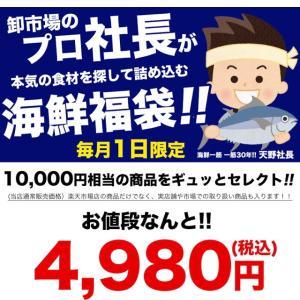 【12時から海鮮福袋】10000円→4980円