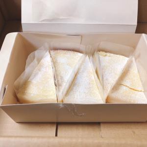再販中チーズケーキとムース10個詰め合わせ