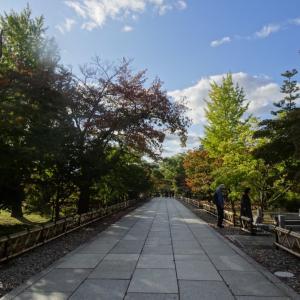 京都でお寺巡り旅@「智積院」