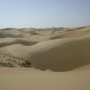 中国体験記 砂漠とラクダとディスコ