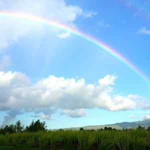 四季の励まし 池田大作先生 和楽の家庭から希望の虹を