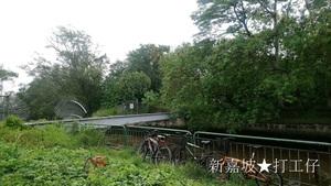 シンガポール鉄分補給シリーズ⑪マレーシア国境に一番近い鉄橋跡