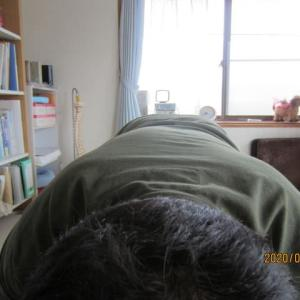 目の奥が重い、頭痛、肩こり、腰痛