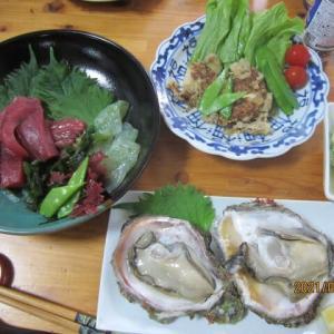 鳥取の新鮮な魚貝類などの食材で昼食です