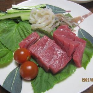 食卓に並ぶ生のクロマグロ・原木シイタケなど新鮮な魚・野菜の宝庫鳥取