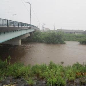 大雨となった鳥取 24時間雨量で全国1~4位が鳥取県