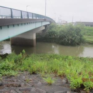 梅雨末期の大雨による河川の氾濫危機が過ぎ落ち着きを取り戻した鳥取