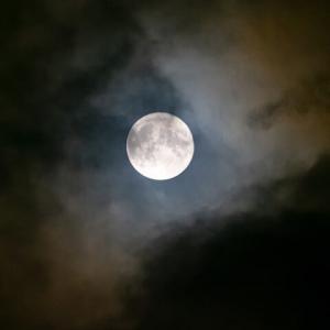 「中秋の名月」今年は撮れました