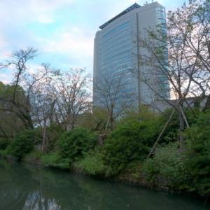 高崎市役所と高崎城趾のお堀。