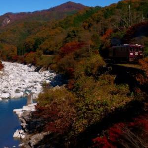 紅葉のわたらせ渓谷鉄道