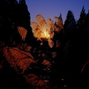新潟から長野、撮影行。紅葉を求めて/でも、少し山がおかしい