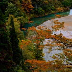 紅葉を愛でに/新潟・長野、秋山郷あたり