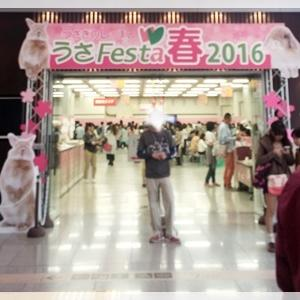 行ってきました~うさフェス。・*と、桜新町桜まつり☆彡