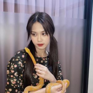 AKB48グループの蛇柱