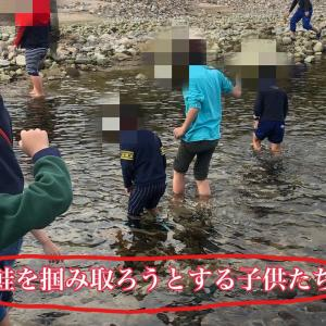 鮭の遡上する川のイベントに遠慮がちに参加したのだ!
