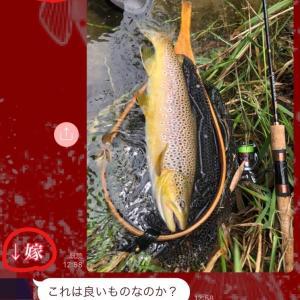 嫁と釣りと、釣り場での嫁との連絡頻度(我が家の場合)