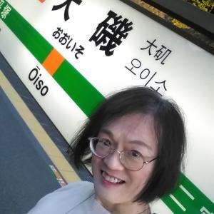 【写真撮影】梅の花~谷保天満宮~