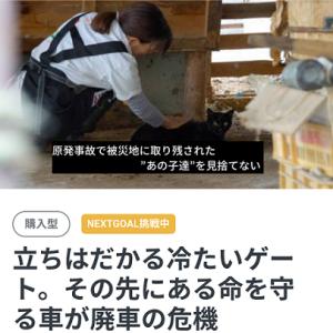 福島第一原発20キロ圏内に取り残された動物たちの今