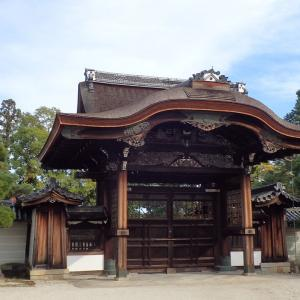 京都・法金剛院→仁和寺→大覚寺~もう一度学ぶ日本史6
