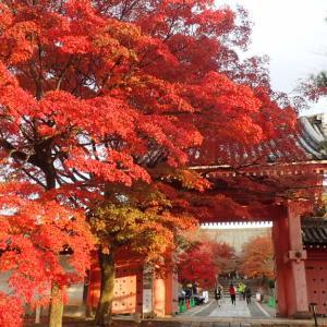 平安神宮・聖護院・吉田神社・真如堂・銀閣寺~京都プチ滞在記2019