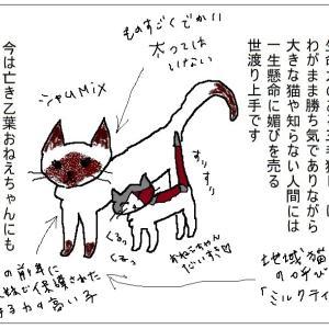 【猫まんが】おねえちゃんは、女子力高め
