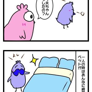 トリ夫ちゃんの憂鬱