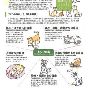 動物福祉市民講座 -3-