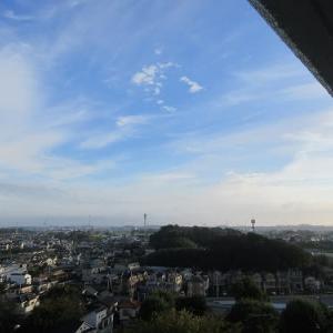 小田原散トレ 20201018