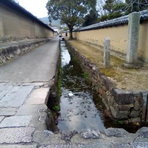 奈良、大和歴史旅。法隆寺と夜の薬師寺、