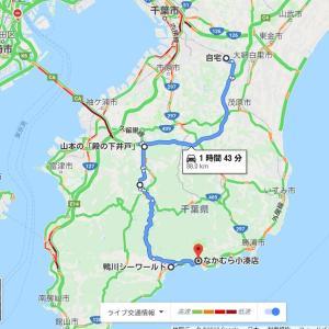 南房総ドライブ 鴨川シーワールドとなかむら小湊店の海鮮丼
