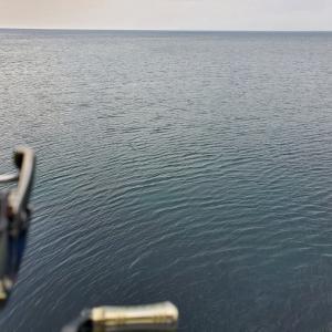 釣り~アジング・泳がせ~