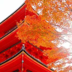 窓を開けて暮らす秋。【高気密高断熱】