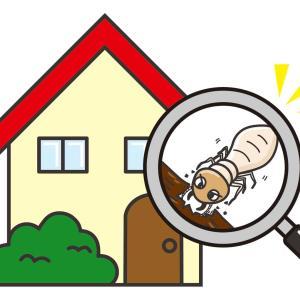 シロアリ対策で長持ちする家【防蟻剤】